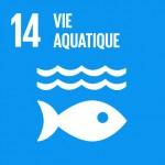 F_2018_SDG_Poster_A4_without_UN_emblem