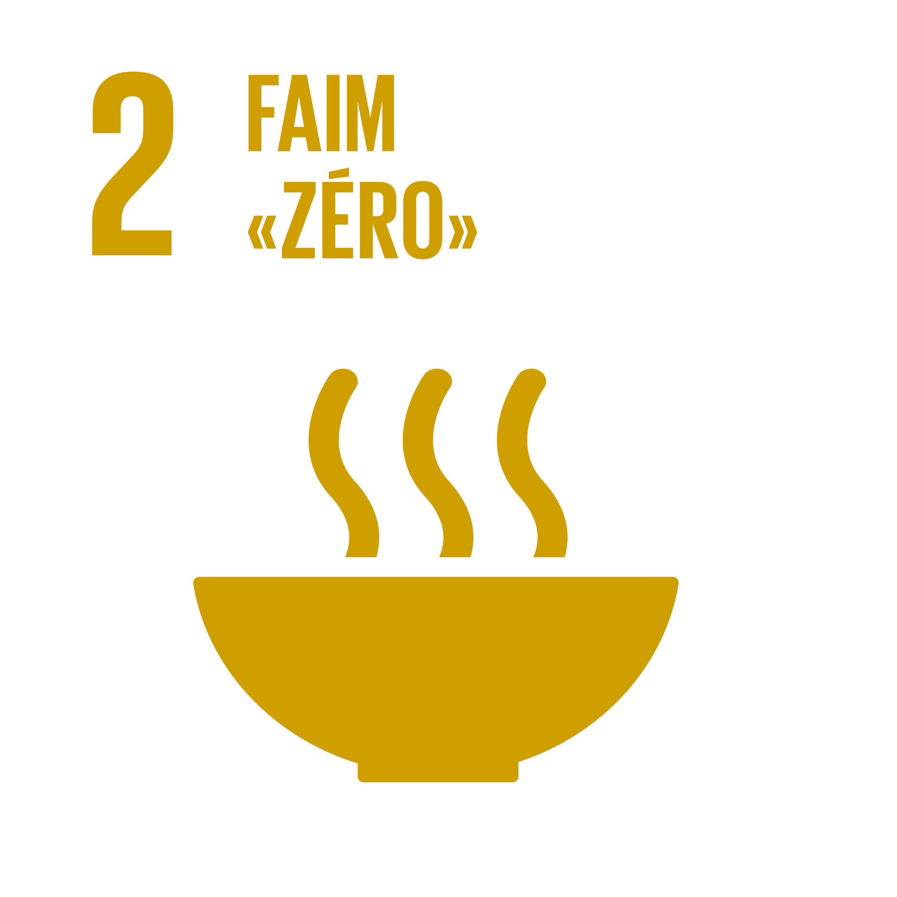 F_INVERTED SDG goals_icons-individual-cmyk-01