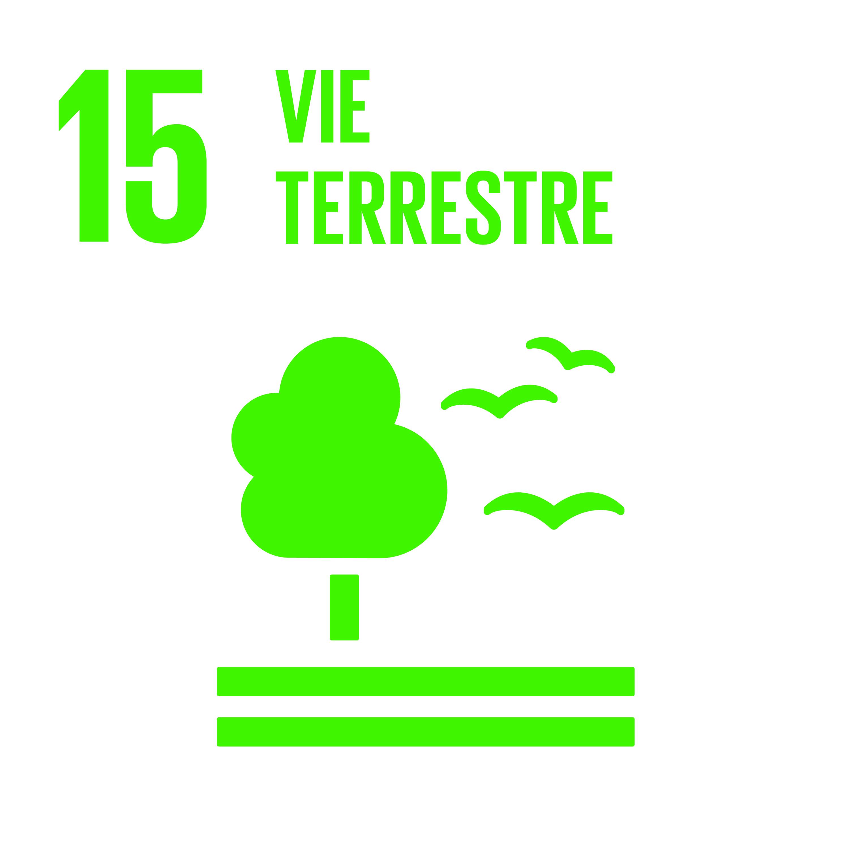 F_INVERTED SDG goals_icons-individual-cmyk-11